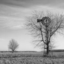 mgoodwin_windmill